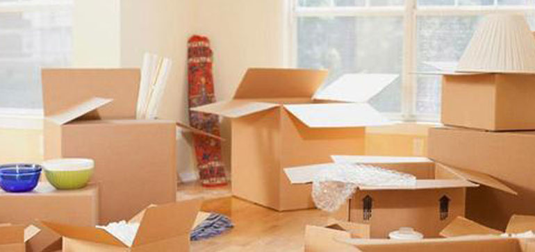 Domestic Relocation Services in Garia